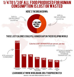 world food waste stat infographic by world bank